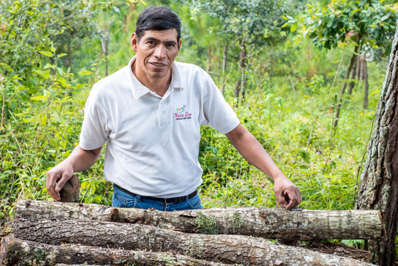 Passion to Preserve: Saving Guatemala's Forests