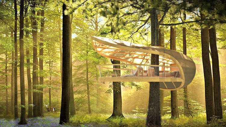 Hanging Hotel Rooms Let Guests Camp In Trees