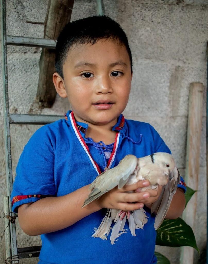 Mayra's son, Gabriel with his pigeon